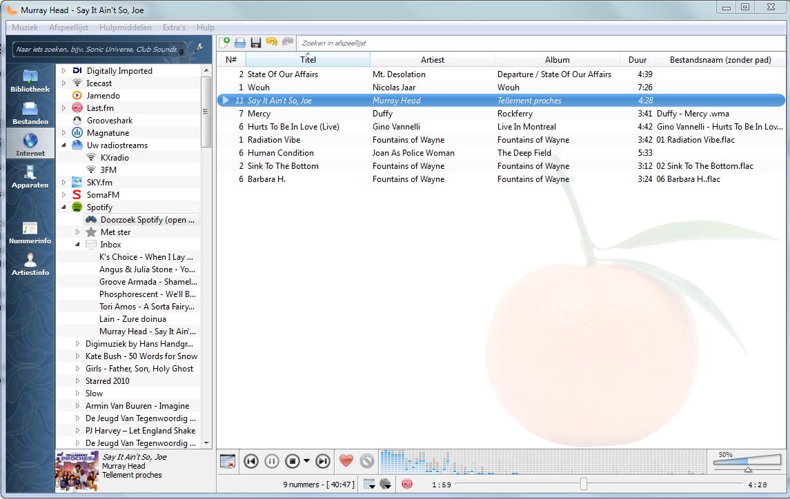 Clementine: Spotify, Grooveshark, Last.fm en radiostreams in één programma